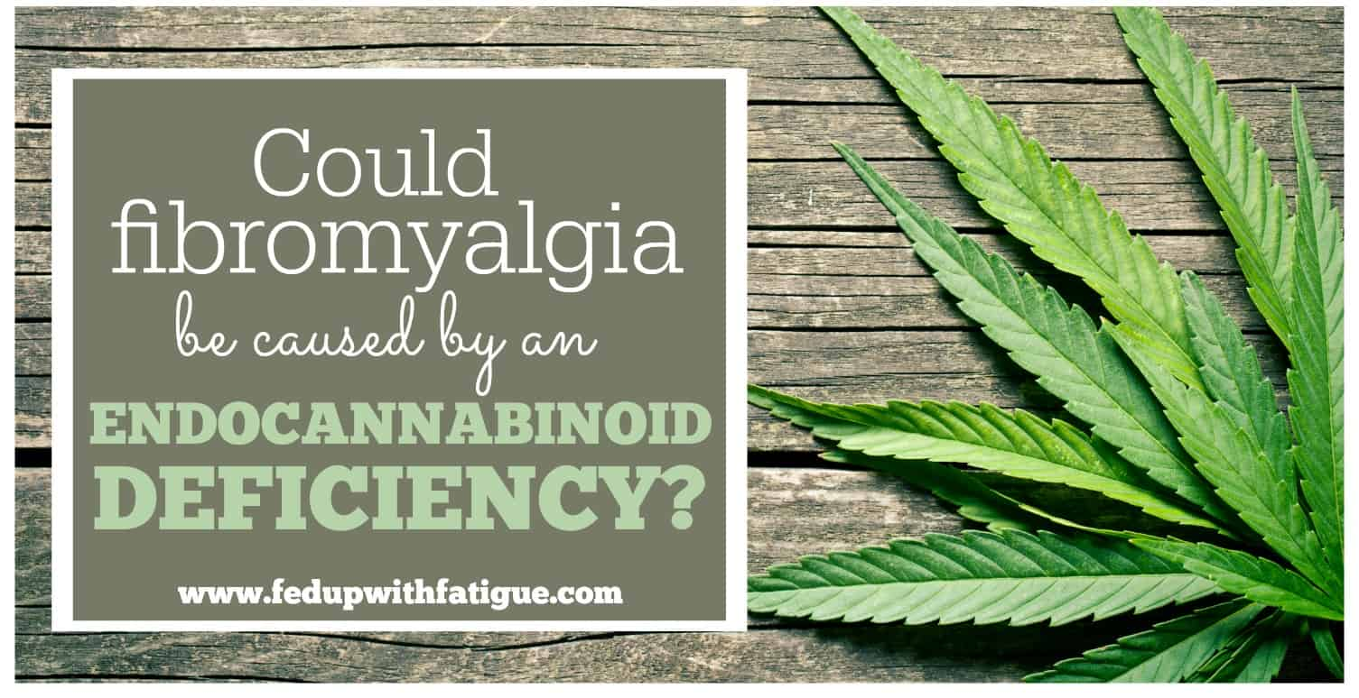 What you need to know about CBD oil and fibromyalgia | Fed Up with