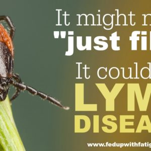 Lyme disease is commonly misdiagnosed as fibromyalgia. That's why it's so important to get the RIGHT testing to rule it out. (FYI: The western blot available through your doctor's office is NOT the right testing!)