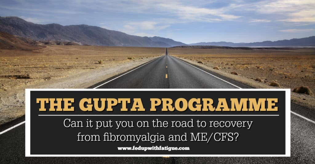Gupta Programme review | Can the Gupta Programme put you on the road to recovery from fibromyalgia and/or ME/CFS?