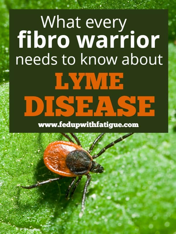 What every fibro warrior needs to know about Lyme disease   Fed Up with Fatigue