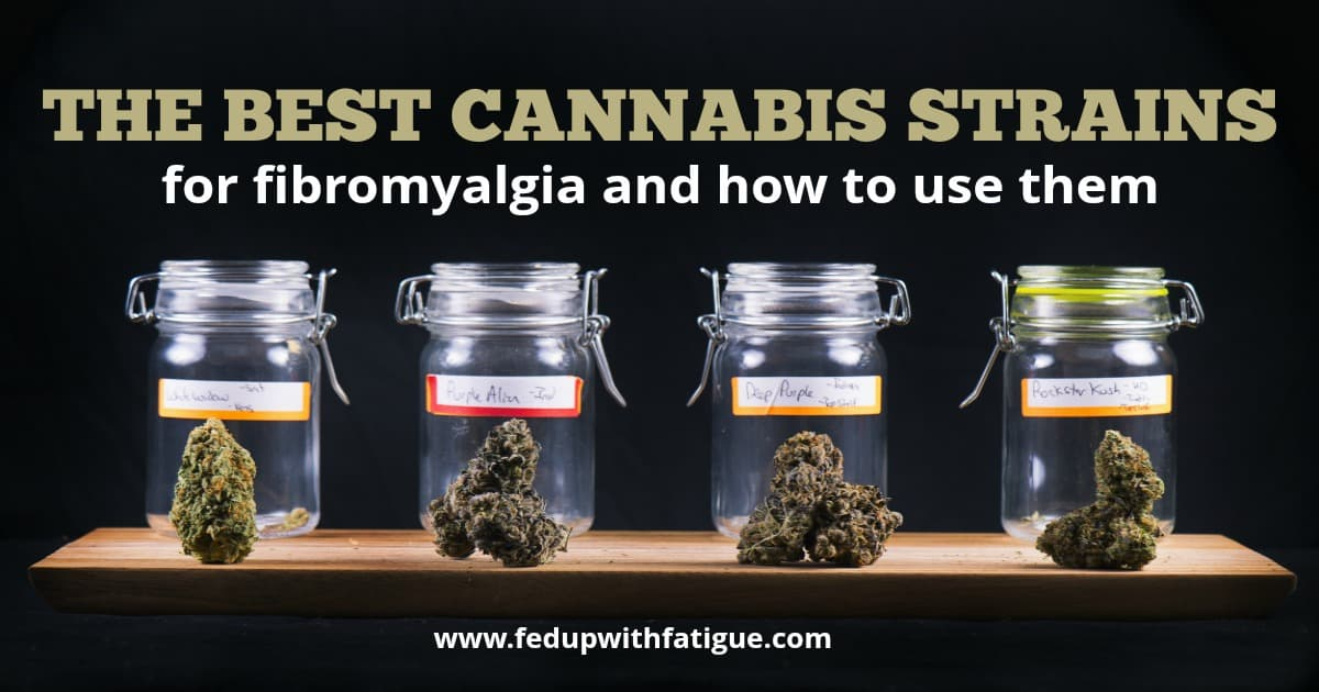 Best cannabis strains for fibromyalgia and how to use them