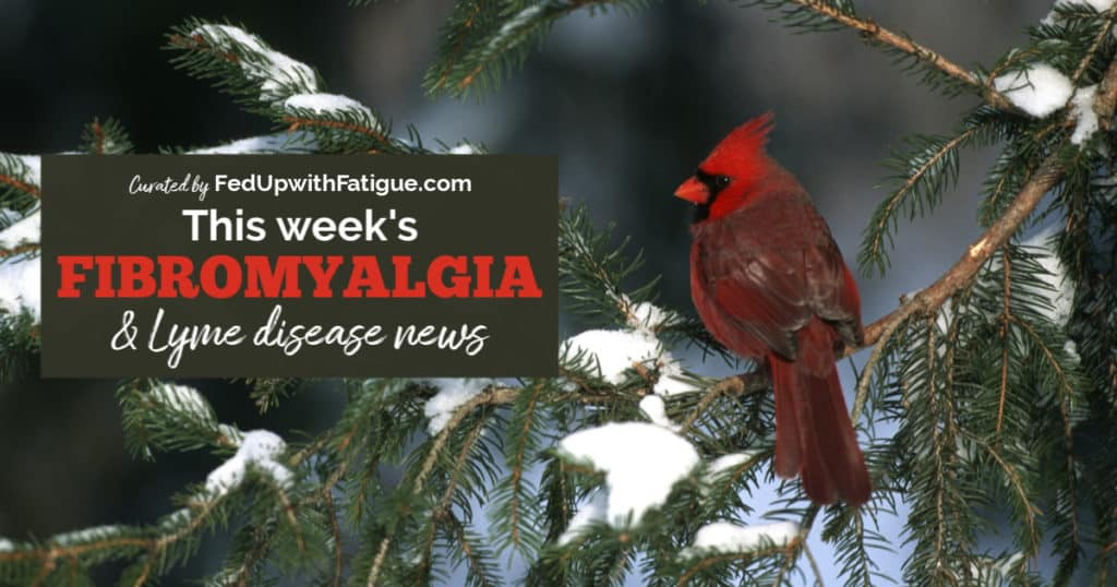 Feb. 7, 2020 #fibromyalgia & #Lyme news highlights: CDC updates website to say Lyme disease can be passed from mother-to-fetus; fibromyalgia pain linked to reduced brain activity; another health insurance company settles lawsuit brought by Lyme patients; DEA report says illicit fentanyl is driving overdose crisis; using Emotional Freedom Technique for fibromyalgia and more! | Fed Up with Fatigue